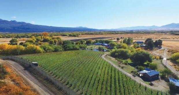 La Ruta del Vino unirá tres regiones turísticas de Chubut - De ...